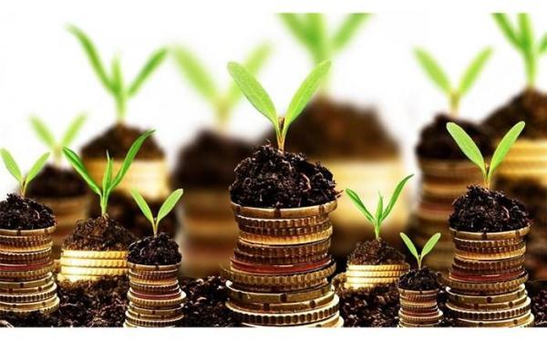 رشد 48 درصدی ارزش سرمایه گذاری خارجی مصوب