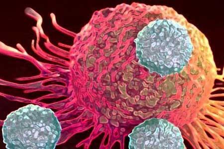 نقش محافظتی کلاژن در سرطان پانکراس